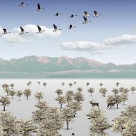 Wind Birds PRO Live Wallpaper