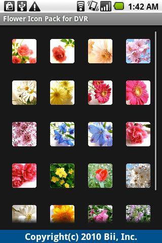DVR:Flower Pack 1.0 Windows u7528 2