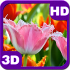 Flowering Fascinating Tulips icon
