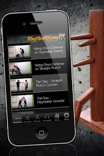 Wing Tsun Kung Fu Wu Shu - screenshot thumbnail