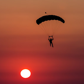 Cool Landing  by Wissam Chehade - Landscapes Sunsets & Sunrises ( skydiving, warm, sky, silhouette, sunset, sunrise, parachute, sun, golden hour,  )