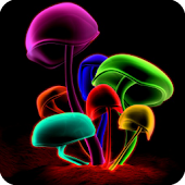 3D Mushrooms LWP