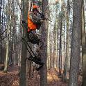 Hunting Calls Free icon