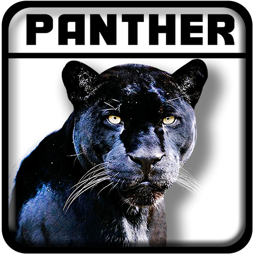 Real Black Panther Simulator