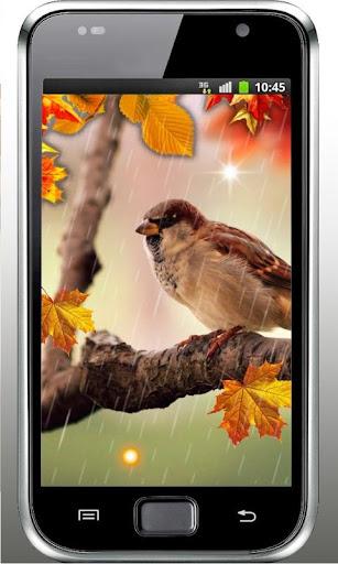 Autumn Rainy Day LWP
