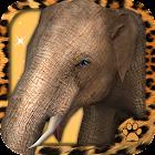 Virtual Pet Elephant icon