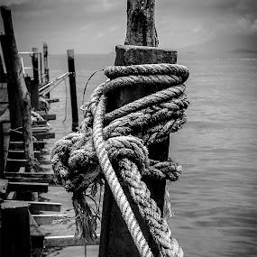 Knots by Barry Ooi - Black & White Abstract ( telok bahang penang )