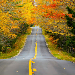 Road Less Traveled by Bala Ve - Landscapes Travel ( new england colors, maine, colors, fall foliage, road,  )