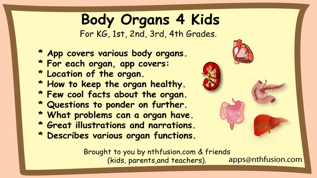 Body Organs 4 Kids- screenshot