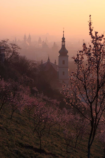 Czech-Prague-countryside - A distant view of Prague, one of Europe's most beautiful cities.