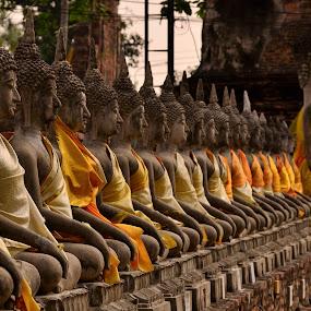 Ayutthaya Wat Yai Chaimongkhon by Pier Riccardo Vanni - Buildings & Architecture Statues & Monuments (  )