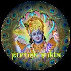 iChant- Purush Sukta icon