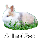 Animal Zoo- Real animal sounds
