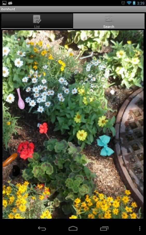 Itemhunt: In The Garden- screenshot