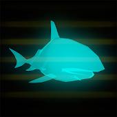 Holograms: Sea Life