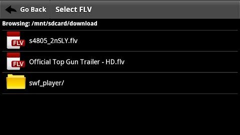 FLV Video Player Screenshot 1