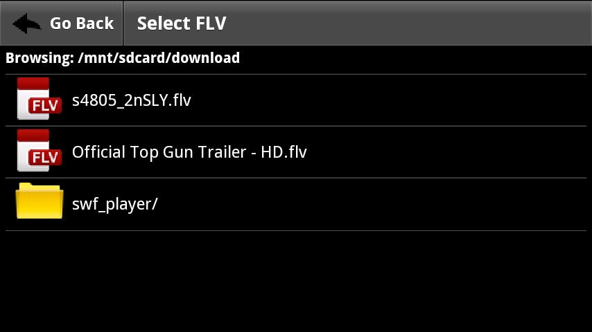 FLV Video Player - screenshot
