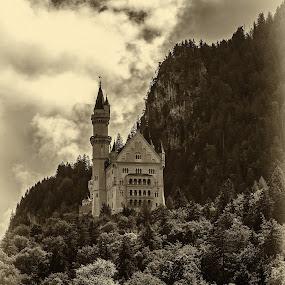 Schloss Neuschwanstein by Jacek Steplewski - Buildings & Architecture Public & Historical ( clouds, mountains, black and white, forest, castle, landscape,  )