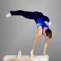 Gymnastics Quiz logo