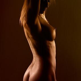 Nude by Michael MacLachlan - Nudes & Boudoir Artistic Nude ( nude, artistic )
