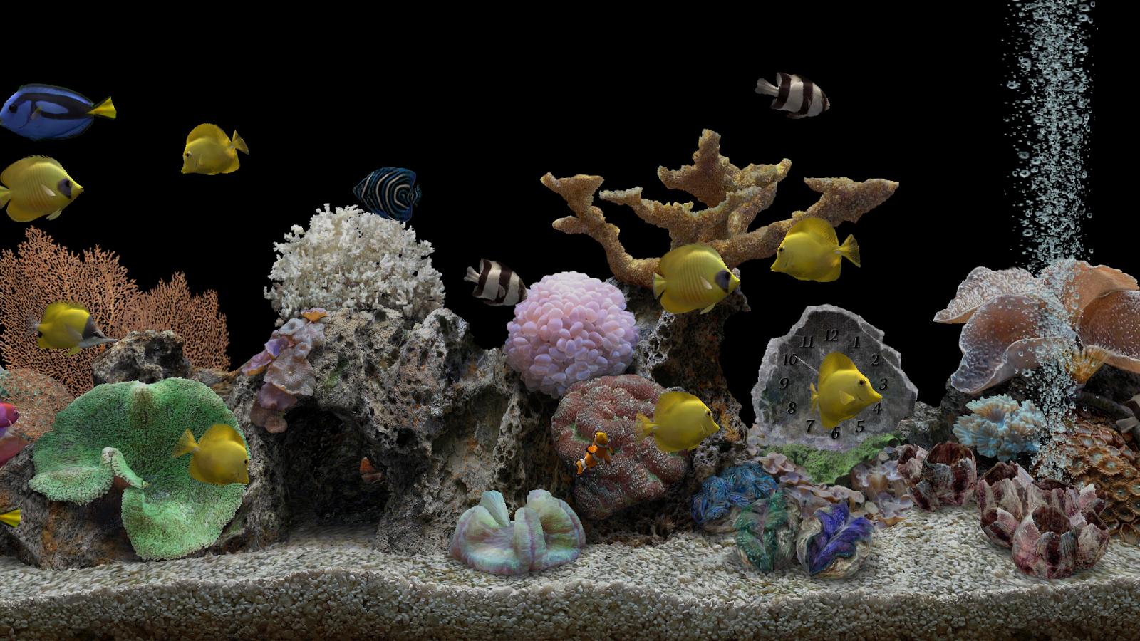 3d обои для рабочего стола аквариум