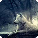 Wolf 3D Live Wallpaper FREE icon