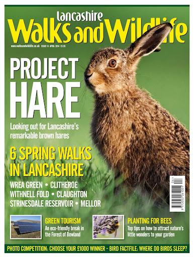 Lancashire Walks Wildlife