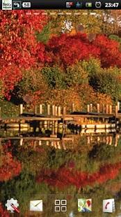jezero podzim lwp - náhled