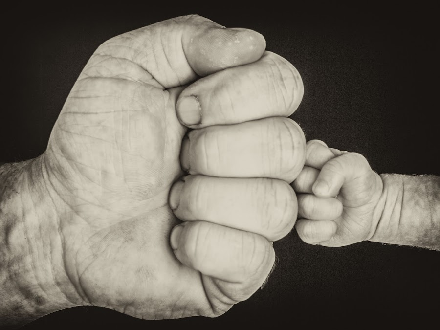 Father & Son by Harrie van der Meer - People Family ( dad with kids, hands, family, black an white, son, photo, harrie van der meer fotografie, photography, holding hands, father )
