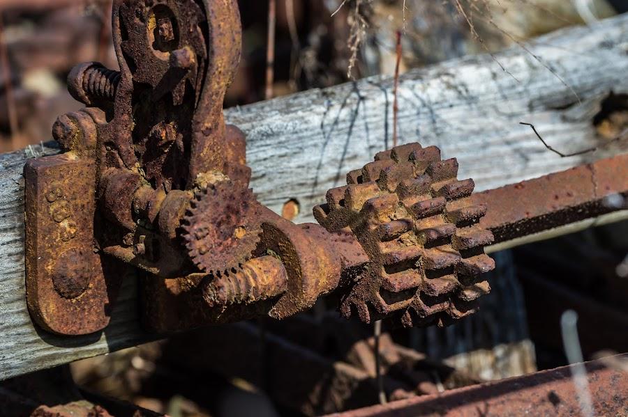 Rusty Gears by Mike Watts - Artistic Objects Industrial Objects ( rust, gears )