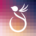 Sparrow Studios icon