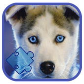 Puppy Dog Kids Picture Puzzle
