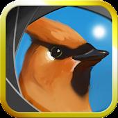 Camera Birds™