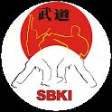Basic Katas Shotokan free icon