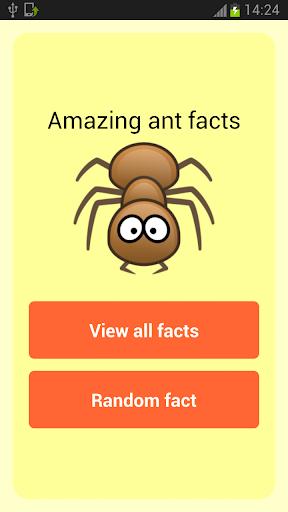 Amazing Ant Facts