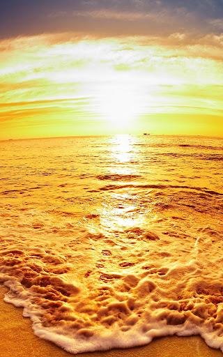 海灘 日落動態壁紙