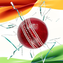 PLAY I.P.L Fantasy Cricket icon