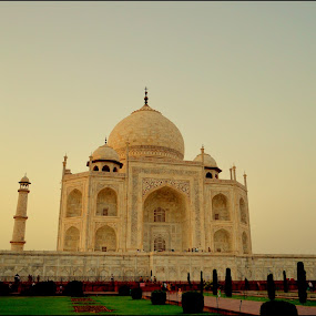 Taj Mahal by Vipin Pachat - Buildings & Architecture Public & Historical