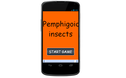 Pemphigoid insects