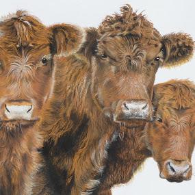 VACAS by Kile Zabala - Painting All Painting ( acuarela, color, animales, pintura )