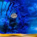 Download MUSLIMS UNITY APK