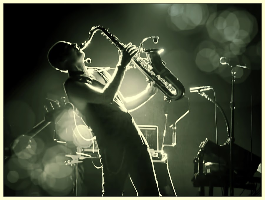 by Alice Gipson - People Musicians & Entertainers ( alicegipsonphotographs, musician, saxaphonist )