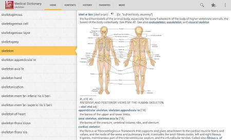 Dorland's Illustrated Medical 4.3.136 screenshot 75890