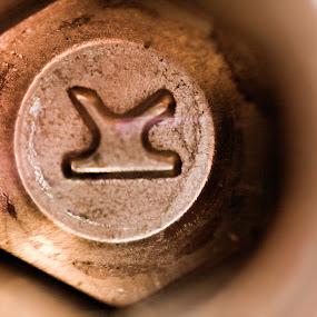 Socket Cap Screw Macro by Jernej Lah - Abstract Macro ( objektiv, reversed lens, macro, cap, screw, socket, obrnjen, object )