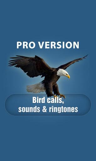 鳥的聲音和鈴聲專業版
