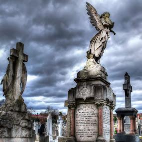 St Patrick's Cemetery, London by Laura Prieto - City,  Street & Park  Cemeteries ( clouds, london, st patrick's cemetery, leyton, graveyard,  )