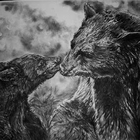 A Mother's Love by Cindy Swinehart - Drawing All Drawing ( bear, charcoal, baby, black, cub, mammal )
