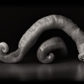 by Melanie Kern-Favilla - Black & White Objects & Still Life ( peppers, spiffypix.com )
