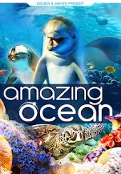 Amazing Ocean