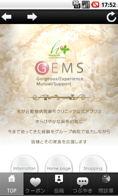 GEMS- screenshot